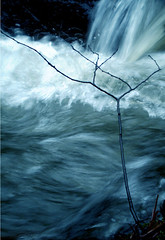 0020 Rama olhando perigo (orxeira) Tags: nature water água waterfall wasserfall natureza galiza perigo cachoeira rama auga cascata carballo fecha fervenza freixa bergantiños 0020 cascad cachón entrecruces póla 002020 ferveda abanqueiro ponla orxeira cadoiro ruxidoira