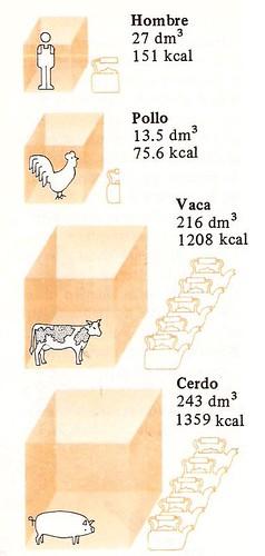 Combustible de residuos organicos