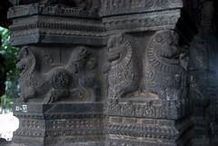 Lions carved in Vijaynagar style (VinayakH) Tags: kanchipuram india tamilnadu temple sculptures historic religious hindu shiva varadharajaperumaltemple varadharajaperumal vijayanagaraempire