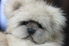 Teddy Bear Mink 2 (kimbearlyoriginal) Tags: kimbearlys teddy bear mink ooak