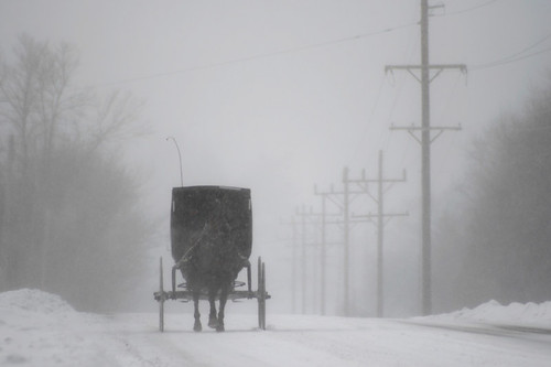 Amish Buggy in a Snowstorm