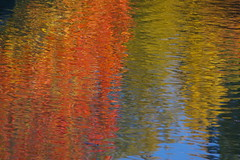 Autumn Reflection, Whistler (rldock) Tags: autumn abstract reflection fall
