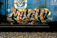 Much (All Seeing) Tags: art graffiti trains tags heavymetal mink much hm sfgraffiti mucho graffitiart freights paintedtrains railart sanfranciscograffiti minneapolisgraffiti monikers freightgraffiti boxcarart bayareagraffiti hobotags minkibd muchhm muchohm twincitiesgraffiti