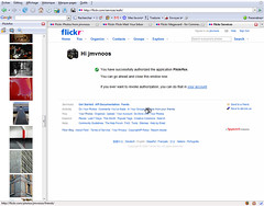 My Flickr tools #15 - Flickrfox (jmvnoos in Paris) Tags: tools software tool flickrtools addon addons jmvnoos