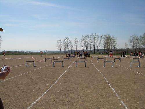 Las carreras de vallas (I): Las pruebas de obstáculos y vallas