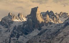Luz dorada (jtsoft) Tags: mountains landscape asturias olympus alpenglow picosdeeuropa e510 cabrales urriellu zd50200mm ec14 asiego jtsoftorg