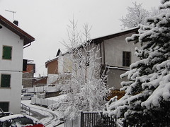 Looking snow.
