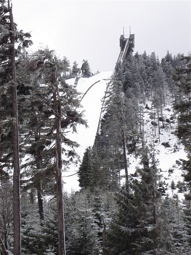 Ski Jump through the Trees