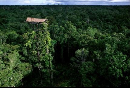 28 imágenes sorprendentes de un pueblo que aún vive en los árboles | Tree People por George Steinmetz ceslava 1
