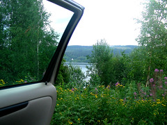 View (Inyx) Tags: flowers lake car view sweden reststop vnern vrmland