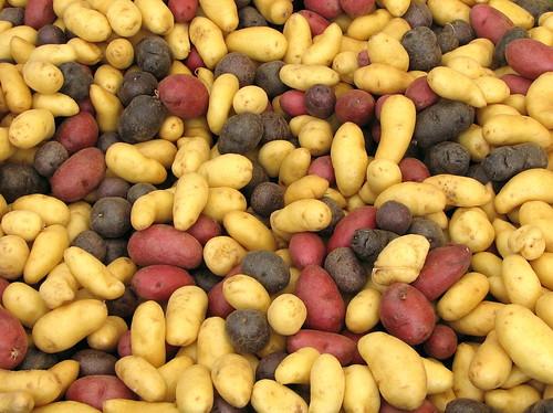 Soiuri de cartofi