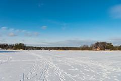 Winter walk (JarkkoS) Tags: 2470mmf28eedafsvr blue cold d800 espoo finland horizon ice landscape sky snow sunlight sunny sunshine suvisaaristo whie winter uusimaa fi