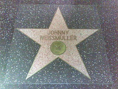 Johnny Weismullers star (Dennisworld) Tags: pme losangeles september walkoffame 2007 hollywoodboulevard johnnyweismuller 070927070930pmeontariolosangeles