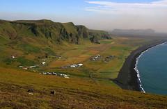 Vik (Tanenhaus) Tags: mountain green iceland vik coastline reynisfjall