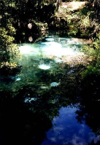 manantial en Florida
