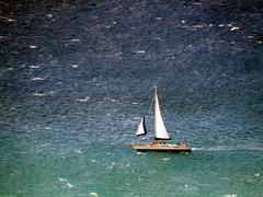 sailboat from Diamond Head summit #3789