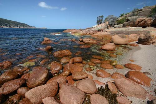 Sleepy Bay, Freixenet N.P.
