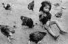 Gallinas (mexadrian) Tags: chicken mexico noiretblanc nayarit hen huichol huicholes bwdreams pochotitan hcafbw hcafbirds