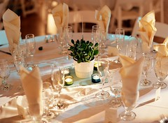 green-centerpieces-wedding-reception (tibimages) Tags: green tablesetting weddingreception centerpieces