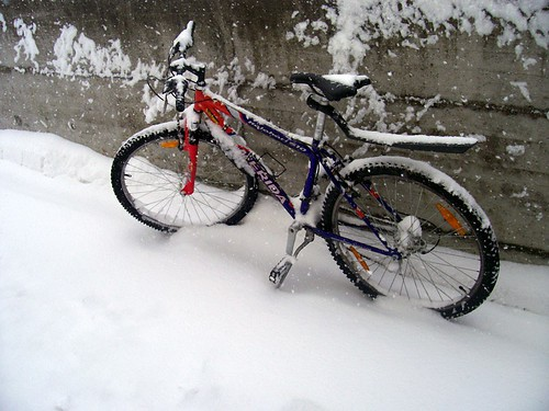 I don't think this bike is going anywhere today!