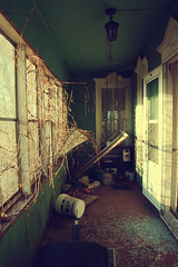 (yyellowbird) Tags: door windows house green abandoned branches porch springbrook