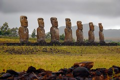 waiting (miguelyn..) Tags: chile nikon southpacific moai easterisland rapanui isladepascua firstquality supershot ahuakivi mywinners platinumphoto infinestyle theunforgettablepictures platinumheartaward goldstaraward miguelyn magicdonkeysbest artofimages saariysqualitypictures bestcapturesaoi magicunicornverybest magicunicornmasterpiece elitegalleryaoi tplringexcellence eltringexcellence