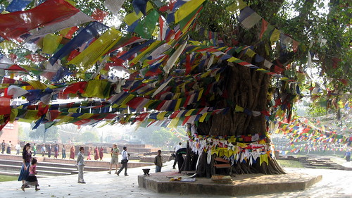 Lumbini by wonker, on Flickr