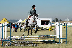 Goulburn_Ag_Show_2008-071 (michael_marsh_photos) Tags: horse jumping hack equine agricultural showjumping goulburn showjump michaelmarsh goulburnagshow goulburnshow