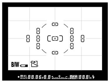 D80 Viewfinder