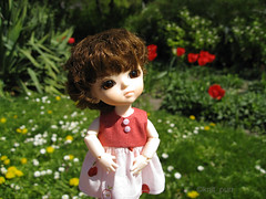 The Flowers in Stadtpark (knit_purr) Tags: vienna holiday cute grass sunshine yellow doll bjd lumi lu stadtpark lati