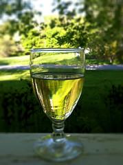 Sancerre (MaineIslandGirl) Tags: summer food green garden island wine maine delicious views porch islesboro wineporchsummer