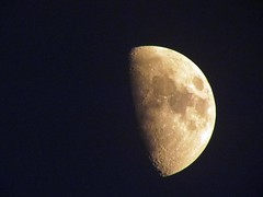 cos I can! (PamiKnows) Tags: sky orange moon hot night luna lunar muggy june2010 panasonicdmcfz100
