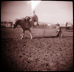 (moominsean) Tags: arizona horse toycamera stellar diana rodeo salome bucking thrown fortepan100 wtcd2007