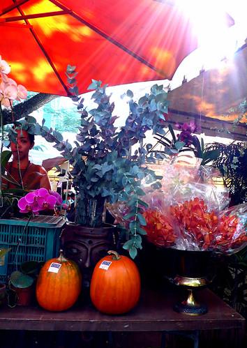 salcedo market pumpkins 1