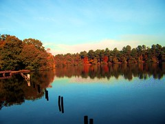 Sutton Park 022 (DBH1 Photos) Tags: suttonpark blackrootpool