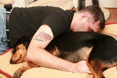 dog as body pillow