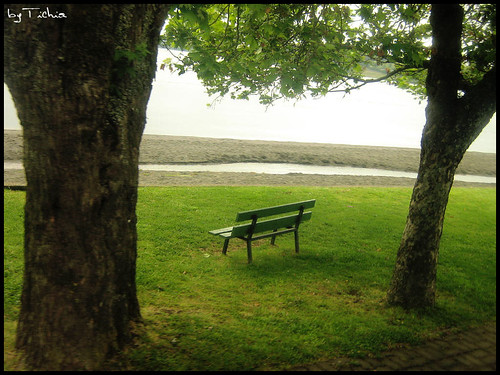 La soledad elegida una opción frente al matrimonio
