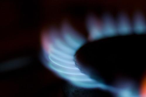 macro gas hob