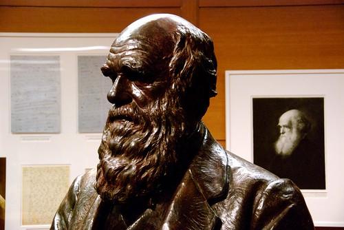 Darwin y el evolucionismo ¿antagónicos?