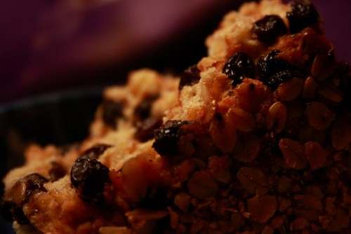 Currant and Pinhead Oatmeal Bread DOF (Small)
