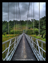 .:. Hanging Bridge.:. (Andhi Priatmoko) Tags: indonesia java 1445mm tegal slawi proudlychopped lebaksiu