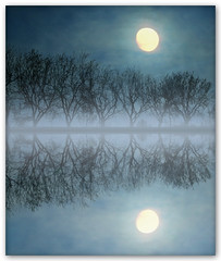 Picture of the Moon (Silvia de Luque) Tags: trees moon reflection fog reflections bravo rboles luna niebla reflejos mne themoulinrouge speiling garymoore alhambra2006 silviadeluque aplusphoto infinestyle megashot bratanesque pictureofthemoon thegoldenmermaid theperfectphotographer thegardenofzen theroadtoheaven thegoldendreams ostrellina sacredmoon