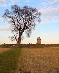 The Angle - Gettysburg Battlefield (smokejmt) Tags: trees tree history field angle pennsylvania historic confederate gettysburg civilwar battlefield cemeteryridge