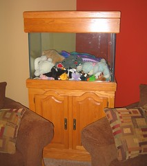 Is it a fishtank or a toychest?