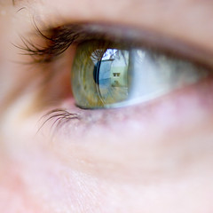 Window Of The Soul (grahambrown1965) Tags: macro eye window wow pentax sigma soul soe 105mm blueribbonwinner sigma105mm sigmamacro sigma105mmf28exdg mywinners k10d pentaxk10d anawesomeshot thatsbostin justpentax thebestpicturegallery