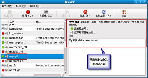 MySQL資料庫