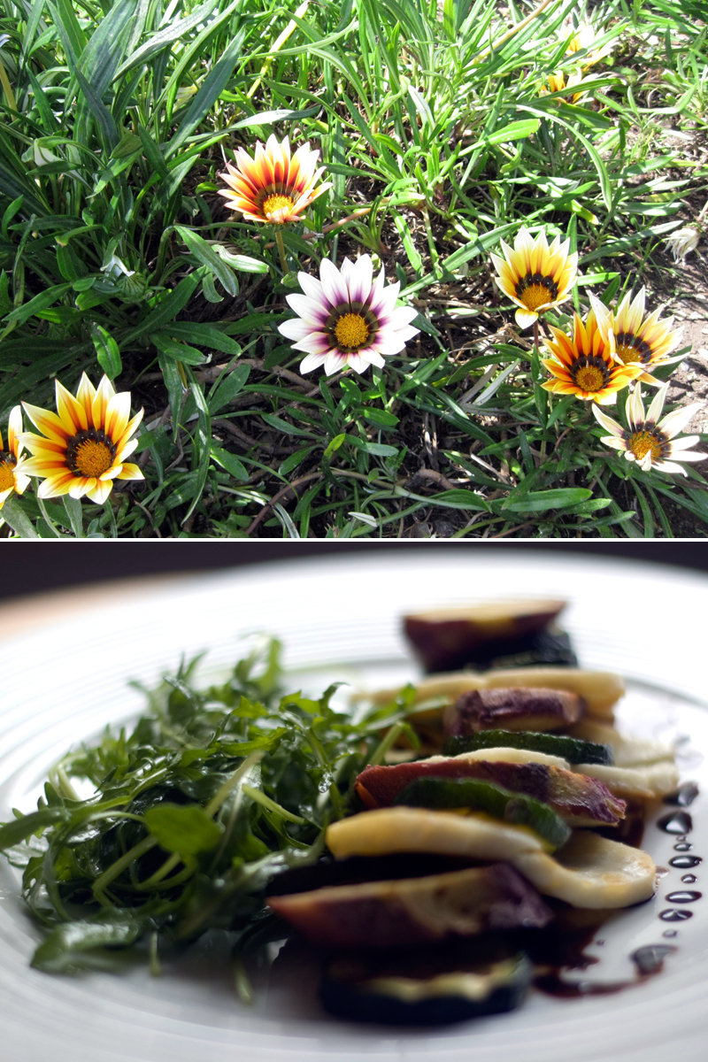 Salada morna de curgete e halloumi // Halloumi Courgette Salad