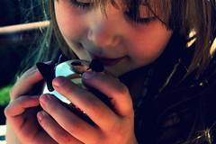 Lisa qui me manque (KraKote est KoKasse.) Tags: portrait chat lisa lausanne frontpage douceur seenonexplore krakote cocotteminute forcont swisspeeks3 wwwkrakotecom valeriebaeriswyl