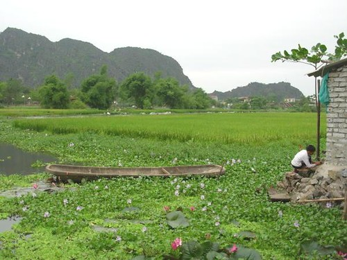 V-Ninh Binh (5)