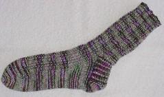 Wild Tide Sock